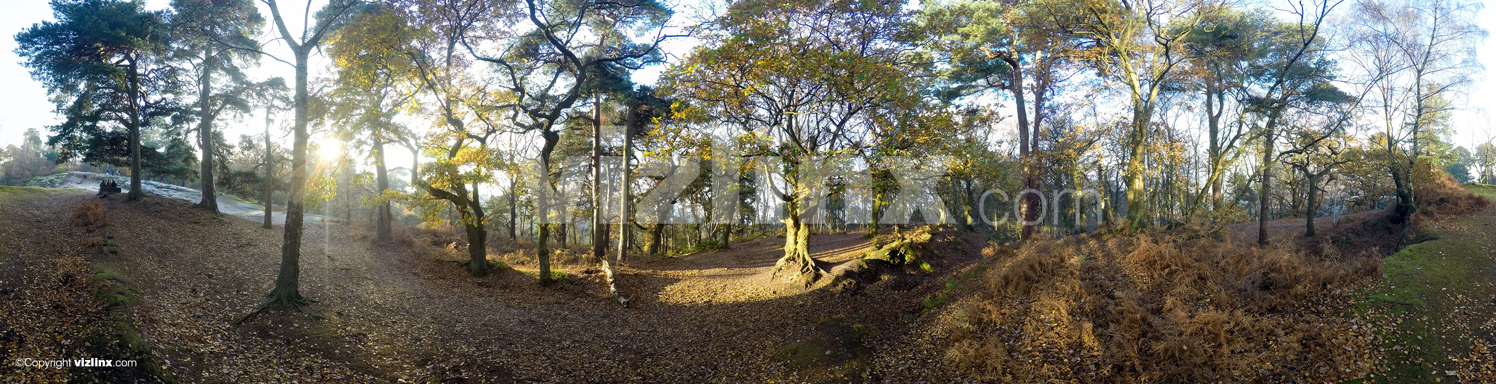 360 panorama of Alderley Edge, Cheshire, vizlinx.com
